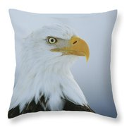 A Portrait Of An American Bald Eagle Throw Pillow