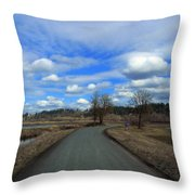 A Road View In Wildlife Refuge Throw Pillow