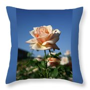 A Texas Rose Throw Pillow
