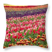 A Tulip Field Throw Pillow