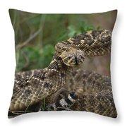 A Western Diamondback Rattlesnake Throw Pillow