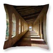 Abandoned Asylum Throw Pillow