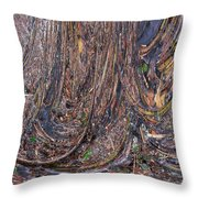Abstarct Flood Throw Pillow