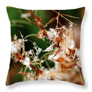 Abstract And Ice Crystals Throw Pillow