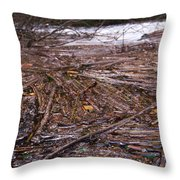 Abstract Flood Throw Pillow