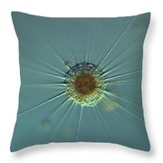 Actinophyrs Lm Throw Pillow by M. I. Walker