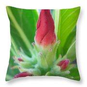 Affectionate Throw Pillow