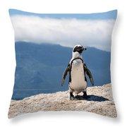 African Penguin Throw Pillow