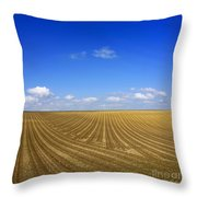 Agricultural Landscape Throw Pillow