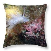 Alabaster Nudibranch Throw Pillow