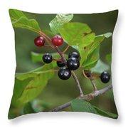 Alder Buckthorn Throw Pillow
