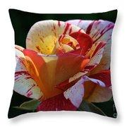 All American Magic Rose Throw Pillow