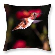 Allen's Hummingbird Throw Pillow