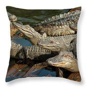 Alligator Pool Party Throw Pillow