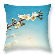 Almond Branch Throw Pillow