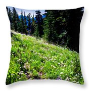 Alpine Meadow Vii At Mount Rainier Throw Pillow
