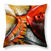 American Lobsters Throw Pillow