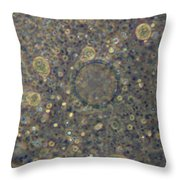 Amoeba Proteus Lm Throw Pillow by M. I. Walker