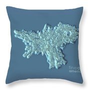 Amoeba Proteus Throw Pillow by M. I. Walker