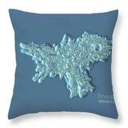Amoeba Proteus Throw Pillow