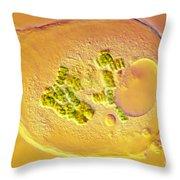 Amoeba Verrucosa Throw Pillow
