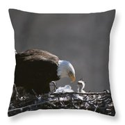 An American Bald Eagle And Chick Throw Pillow