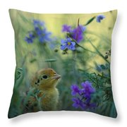 An Attwaters Prairie Chick Surrounded Throw Pillow