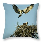 An Osprey Carrying A Fish Back Throw Pillow