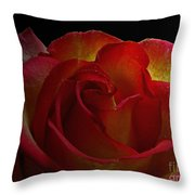 Annaversary Rose I  Throw Pillow