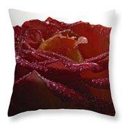 Annaversary Rose II Throw Pillow