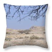 Aravah Desert Landscape  Throw Pillow