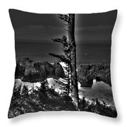 Arch Rock Oregon Coast Throw Pillow