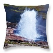 Artesia Geyser Throw Pillow