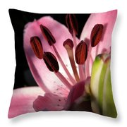 Asiatic Lily Named Vermeer Throw Pillow