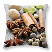 Assorted Spices Throw Pillow by Elena Elisseeva