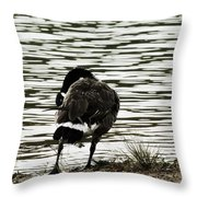 At The Waters Edge Throw Pillow