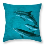 Atlantic Spotted Dolphins Throw Pillow