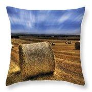 August Field Throw Pillow