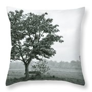 August In England Throw Pillow