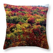 Autumn Along The Highland Scenic Highway Throw Pillow