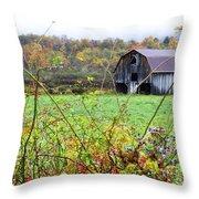 Autumn Along Tioga Road Throw Pillow