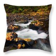 Autumn Passing Throw Pillow
