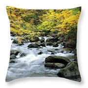 Autumn Stream 3 Throw Pillow