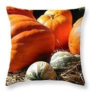 Autumn Study Throw Pillow
