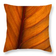 Backlit Leaf Throw Pillow