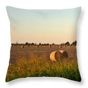 Bales In Peanut Field 2 Throw Pillow by Douglas Barnett