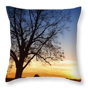 Bare Tree At Sunset Throw Pillow