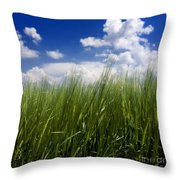 Barley Field  In Limagne. Auvergne. France Throw Pillow