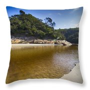 Beach Erosion Throw Pillow