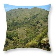 Beautiful Mount Tamalpais Throw Pillow